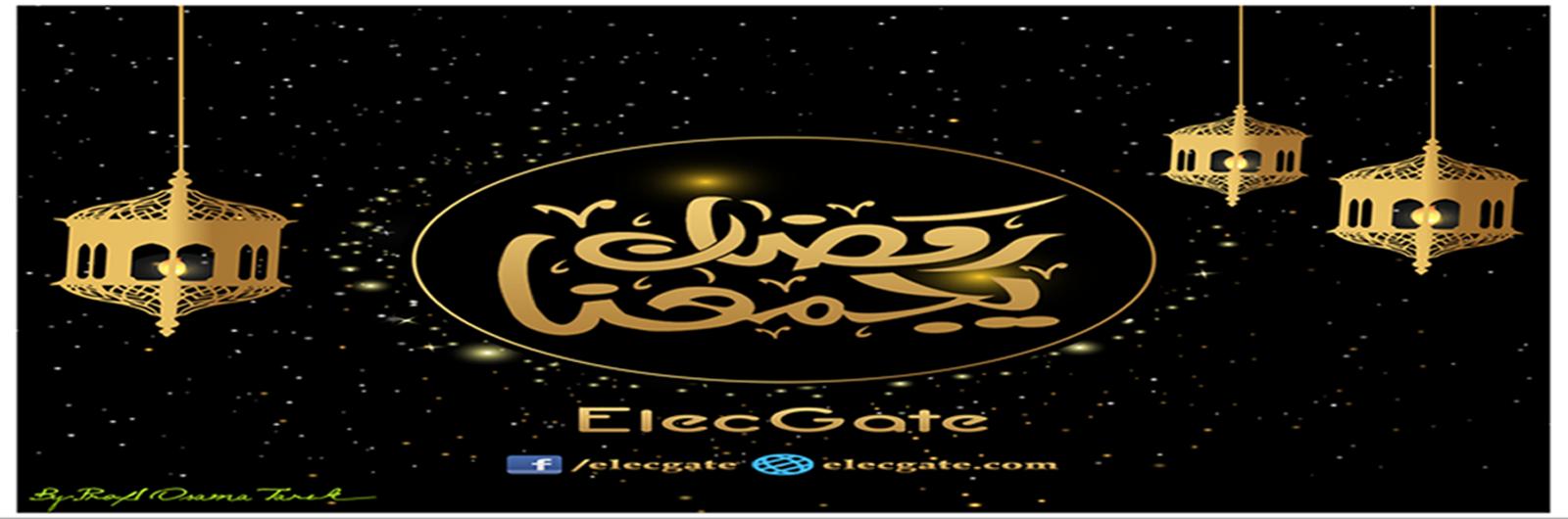 بوابة الكهرباء ElecGate